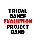 Tribal Dance Evolution Project Band